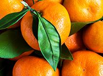 Tangerine Essence